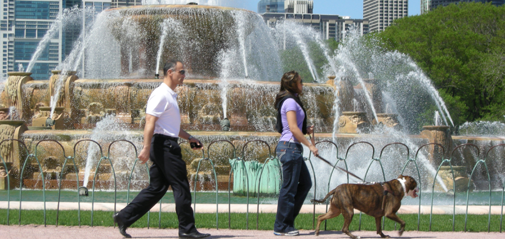 Couple walking dog at Buckingham Fountain